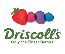 logo Driscoll's