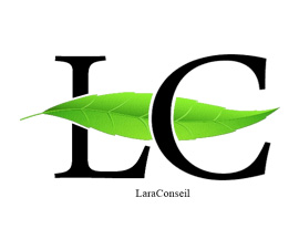 logo Lara conseil