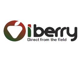 logo Iberry